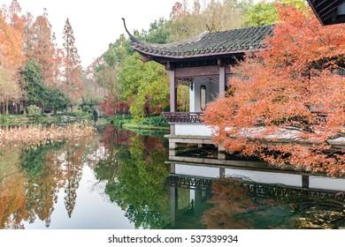 Chinese style garden scenery