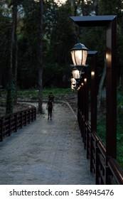 Chinese style lamp posts corridor.