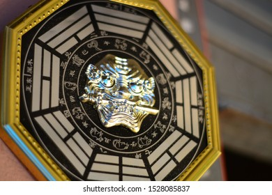 Chinese Talisman Octagon amulet and lion sword Graphic vector.