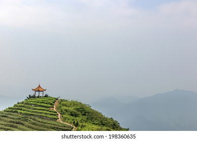 Chinese tea mountains and the Chinese Pavilion