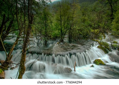 In the Chinese valley of Jiuzhaigou, the stream runs through the forest and trees grow in the river