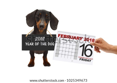 chinese year of the dog 2018 february calendar date 16 friday