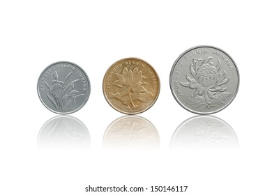 Chinese Yuan coins set front side isolated on white with refleciton