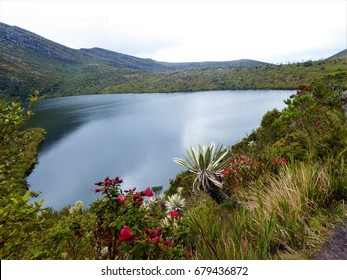 Chingaza national park near to bogota, in Colombia