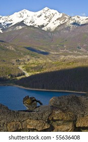 A Chipmunk above the Lake Dillon Overlook in Summit County, Colorado