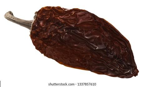 Chipotle Morita, a whole smoke-dried overripe Jalapeno chile pepper