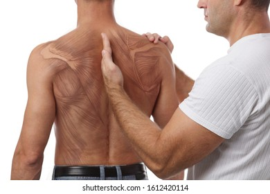 Chiropractic treatment anatomy , Back pain relief. Physiotherapy / Kinesiology for male patient, sport injury recovery