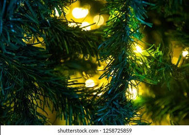 Chirsmas Tree Close up