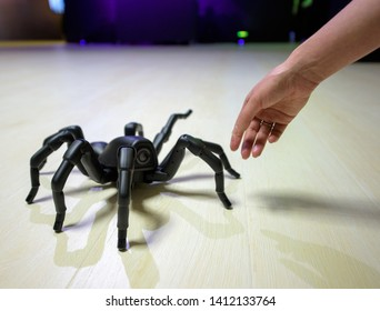 CHISINAU, MOLDOVA-5 MARCH, 2019: exhibition of robots and engineering creations, black robot spider goes to the floor