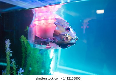 CHISINAU, MOLDOVA-5 MARCH, 2019: exhibition of robots and engineering creations, a fish robot in an aquarium