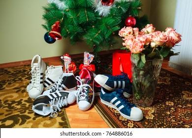 Chisinau, Republic of Moldova - January 04, 2016: sneakers Superstar company Adidas on background of the Christmas tree. Horizontally framed shot.