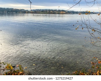 Chism Beach Park is lcocated on the shores of Lake Washington, this waterfront park features a dock, picnic and play areas, restrooms, and large picnic areas.