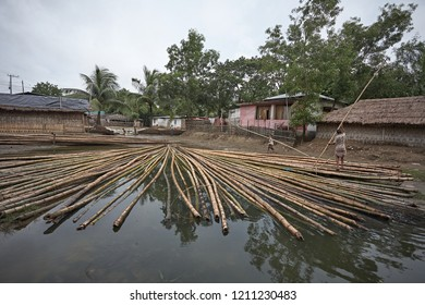 Chittagong, Bangladesh, July 2009 - A group of people transporting bamboo in a canal near Cox's Bazar beach, the largest in the world.