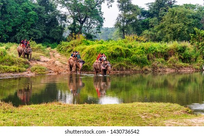 Chitwan, Nepal - Oct 20, 2018: View at the people riding on Elephants, Chitwan National Park, Nepal