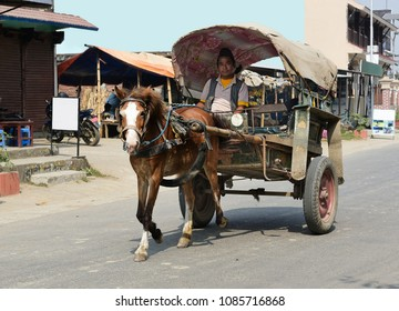 CHITWAN, NEPAL-FEBRUARY 21, 2017:Horse carriage traveling on the street of Chitwan city. Horse carriages are popular traditional transportation vehicle for local people and tourists in Nepal.