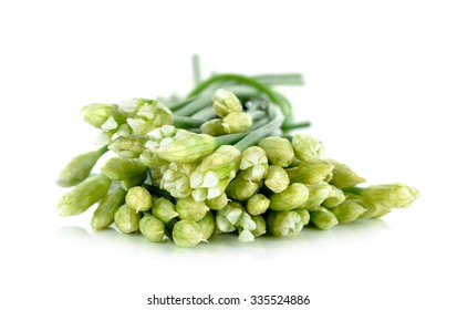 Chives flower or Chinese Chive isolated on white background.