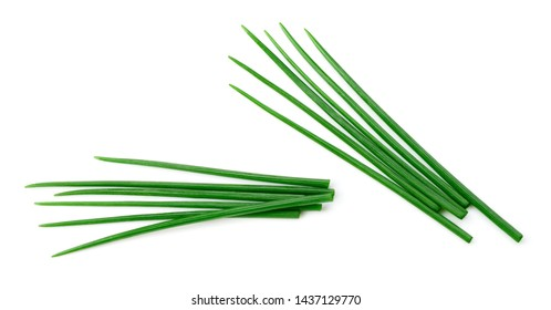 Chives isolated. Young green onion. Chives on white. Set.