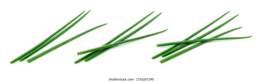 Chives isolated. Young green onion. Collection. Flat lay. Top view.