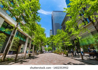 """CHIYODA, TOKYO / JAPAN - MAY 5 2019 : The scenery of """"Marunouchi Nakadori Avenue"""" where the young leaves of Zelkova are beautiful. On a holiday, there are many shopping streets along the avenue."""