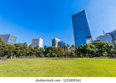 """CHIYODA, TOKYO / JAPAN - NOVEMBER 2 2018 : Scenery of """"First flower bed"""" of Hibiya Park. It is a place for relaxation of office workers. Beyond the park there is a building of """"Tokyo Midtown Hibiya""""."""