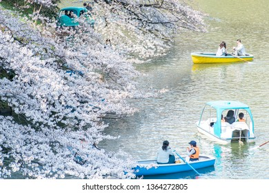 CHIYODA, TOKYO PREFECTURE, JAPAN - March 27, 2019: Visitors enjoying the scenario surrounded by Chidori-ga-fuchi Moat's cherry blossoms (sakura) on a rental boat ride.