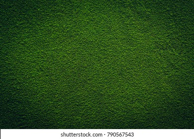 Chlorella powder macro background texture. Top view