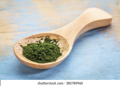 chlorella  powder on wooden spoon against blue painted grunge wood