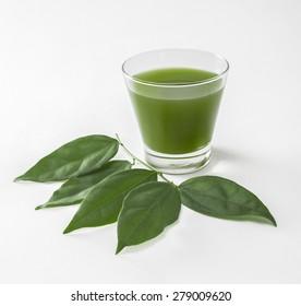 Chlorophyll bai-ya-nang  (Tiliacora triandra)