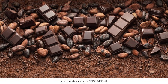 Chocolate bar pieces, cocoa powder and roasted cocoa beans background / full frame