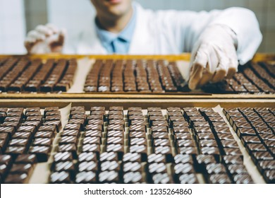 chocolate candies process making master factory worker