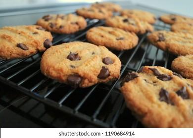 Chocolate Chip Keto Almond Flour Coconut Flour Homemade Cookies