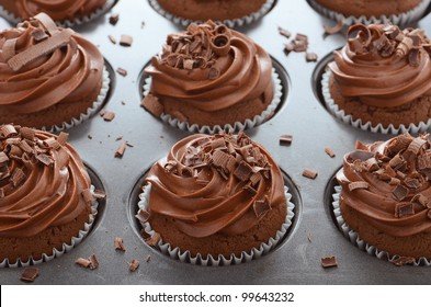 Chocolate cupcakes with swirl frosting in baking pan