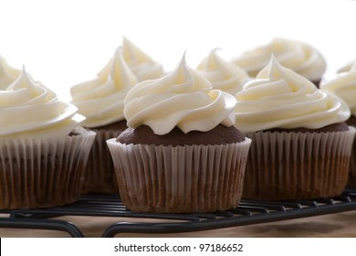 Chocolate cupcakes with vanilla frosting on a white background