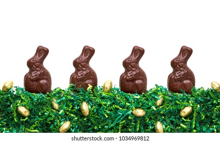 Chocolate easter bunnies on green grass