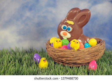 Chocolate Easter bunny and yellow chicks with colorful eggs in nest on grass