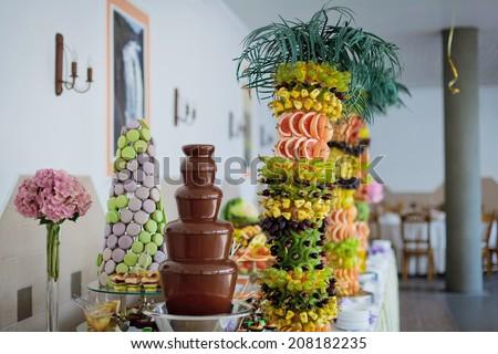 Chocolate Fountain Palmtree Fruits Wedding Reception Stock Photo
