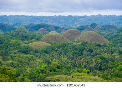 Chocolate hills in Bohol island The Philippines