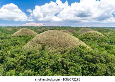 chocolate hills at Bohol, Philippines
