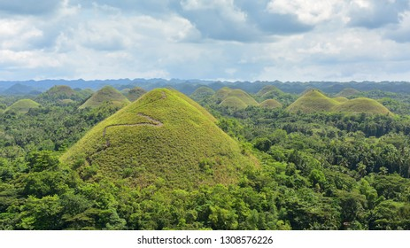 The Chocolate Hills geological formation in Bohol, Philippines