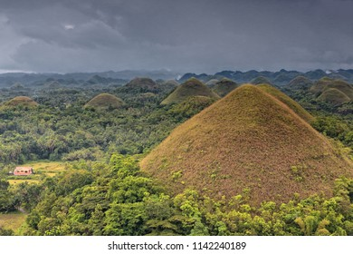 Chocolate Hills geological formation-rolling terrain of haycock hills-conical shaped limestone mounds grass covered-it turns chocolate brown in the dry season. Bohol island-Central Visayas-Philippines