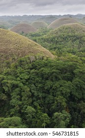 The Chocolate Hills on the island of Bohol, Visayan, Philippines./The Chocolate Hills