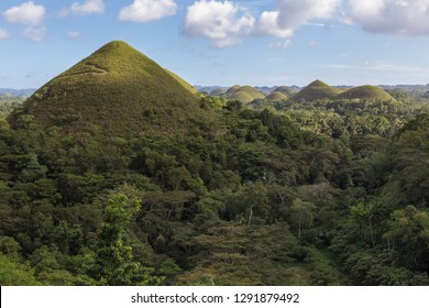 Chocolate hills. Unique truffle shaped formations is the main attraction of Bohol island, Philippines
