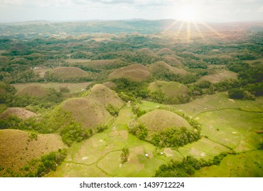 Chocolate Hills,which Amazingly shaped Chocolate hills on sunny day on Bohol island, Philippines