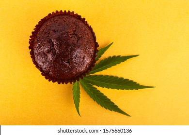 chocolate muffin with cannabis extract . cannabis leaf and sweet cake on yellow background.