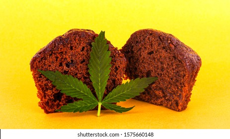 chocolate muffin with cannabis extract . cannabis leaf and sweet cake on yellow background close up.