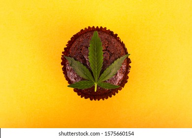 chocolate muffin with cannabis extract . cannabis leaf and sweet cake on yellow background top view.