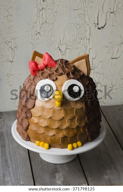 Super Chocolate Owl Kids Birthday Cake On Stock Photo Edit Now 371798125 Birthday Cards Printable Riciscafe Filternl
