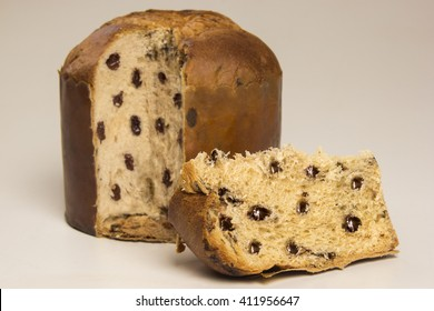 Chocolate panettone, typical dessert for Christmas
