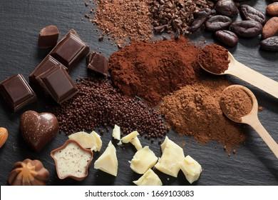 Pralines au chocolat, morceaux de chocolat, poudre de cacao et fèves de cacao