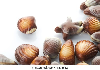 Chocolate Seashells over white